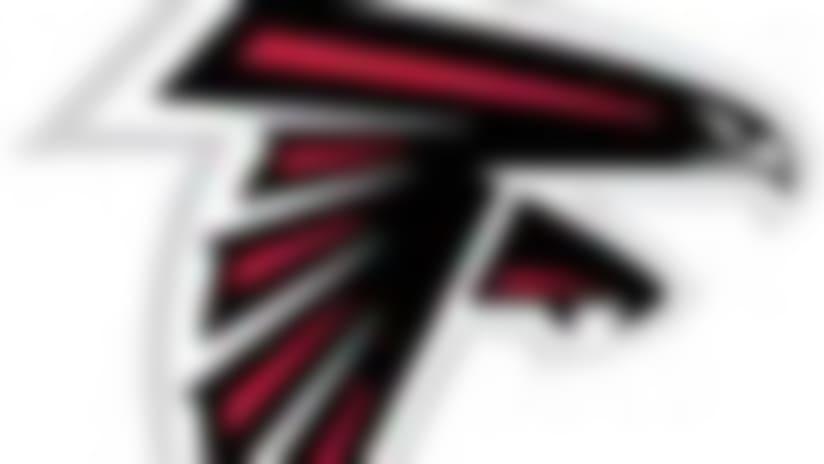 Falcons-130220-IL.jpg