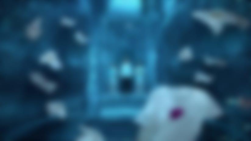 Video Thumb [ID:403523]