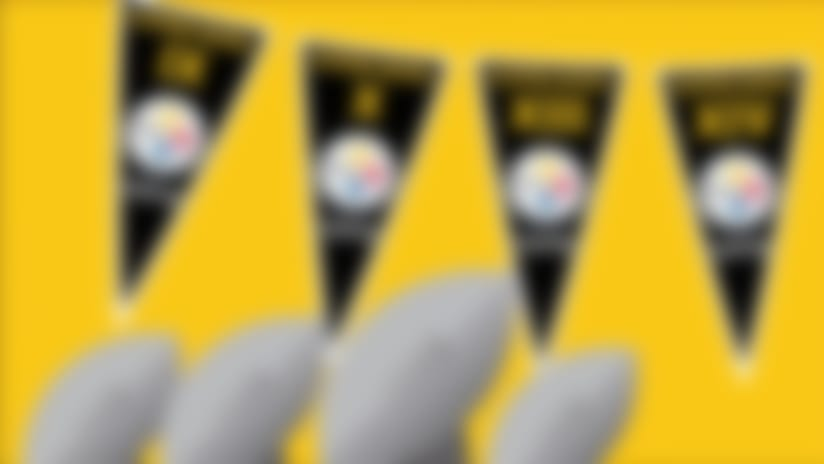 Animated guide to the Pittsburgh Steelers