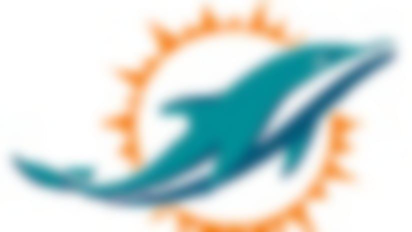 Dolphins-65x90-082014.jpg