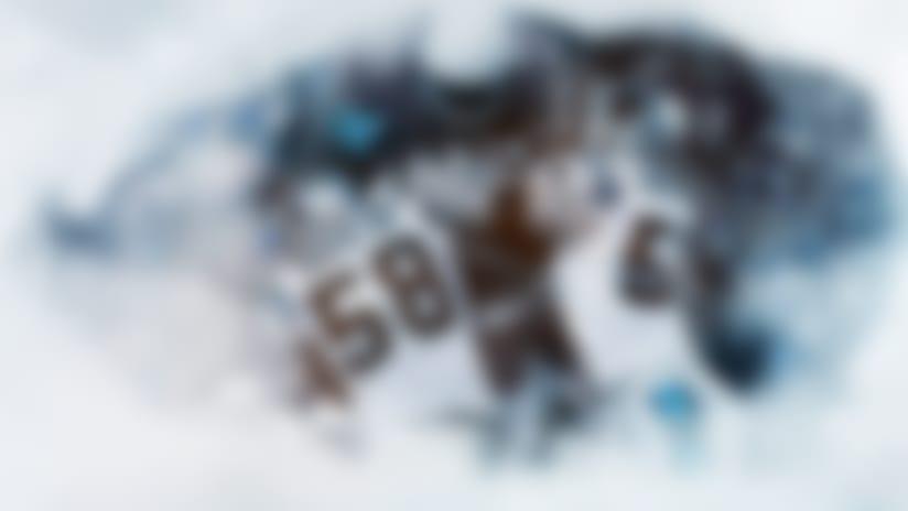 PanthersLBs-Sidelines-Hero-A