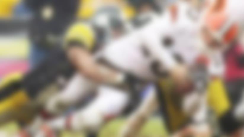 Browns-Steelers-130327-Spot.jpg