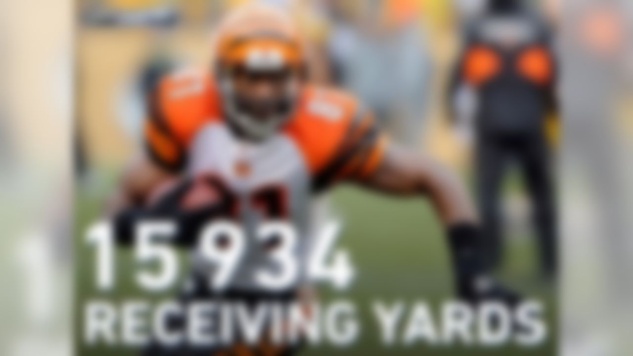 Despite ranking second in NFL history in receiving yards with 15,934, Owens never led the NFL in receiving yards in a single season.