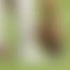 toub-new-hero-1024x576