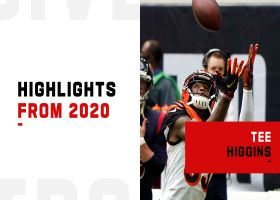 Tee Higgins highlights | 2020 season