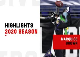 Marquise Brown highlights | 2020 season