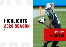 Robby Anderson's best catches | 2020 season