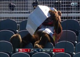 Staley Da Bear catches some rays at Soldier Field