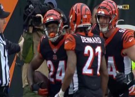 Darius Phillips dives for INT to set up Bengals offense with great field position
