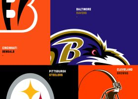 Biggest AFC North offseason acquisitions, losses   'GMFB'
