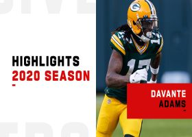 Davante Adams highlights | 2020 season