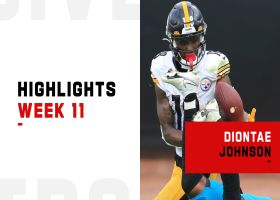 Every catch by Diontae Johnson from 111-yard game | Week 11